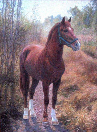 Portrait d'un cheval. Automne. 70x90 Huile sur toile