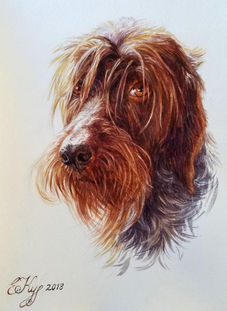 Techniques de peinture. Portrait d'une chienne. Aquarelle