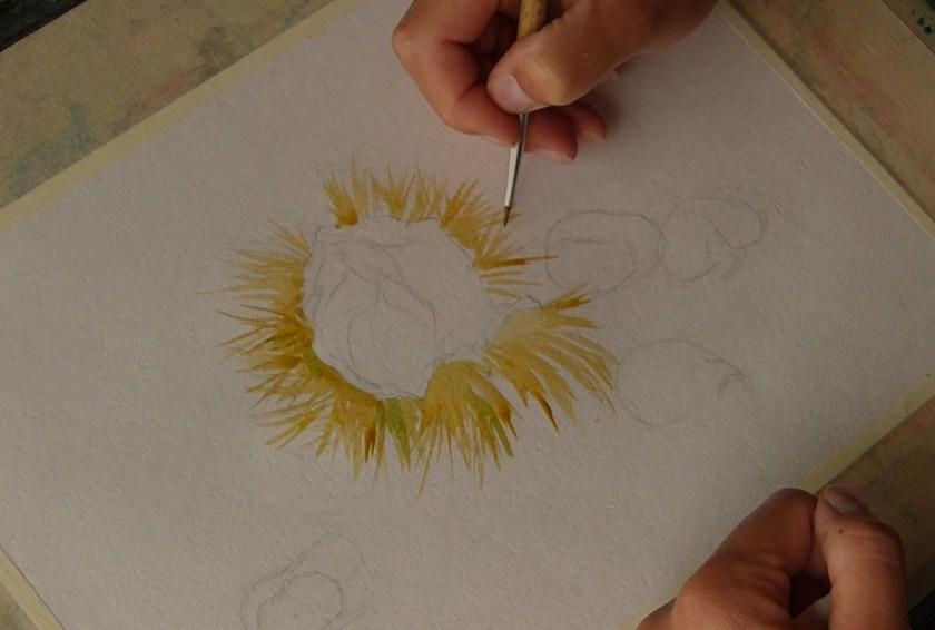 Comment commencer à peindre à l'aquarelle une nature morte avec les châtaignes