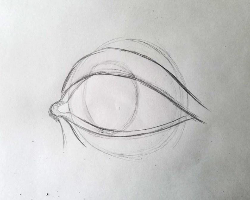 Comment dessiner des yeux. On place l'iris.
