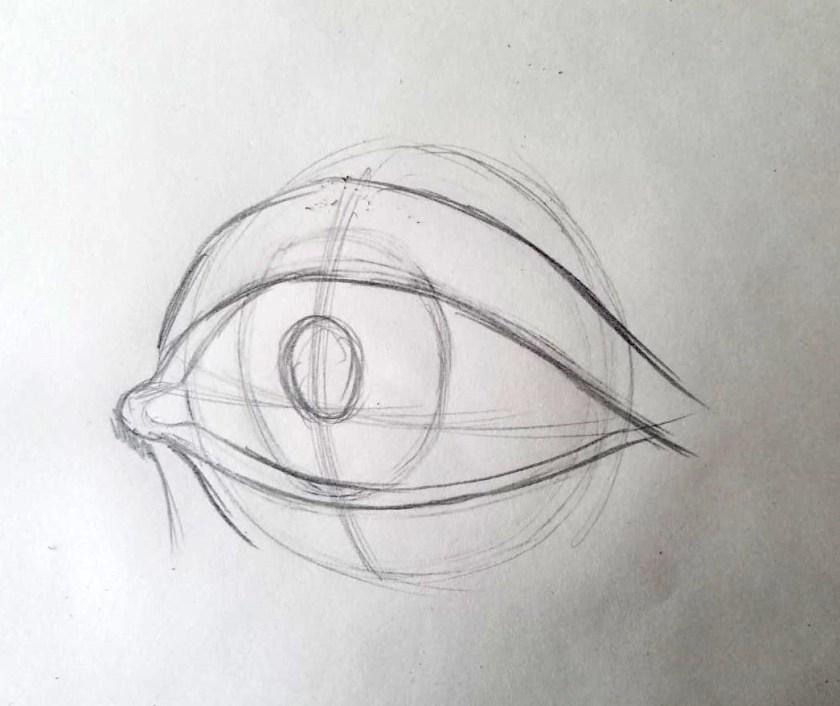 Comment dessiner des yeux. L'iris et la pupille. Avec les lignes auxiliaires.