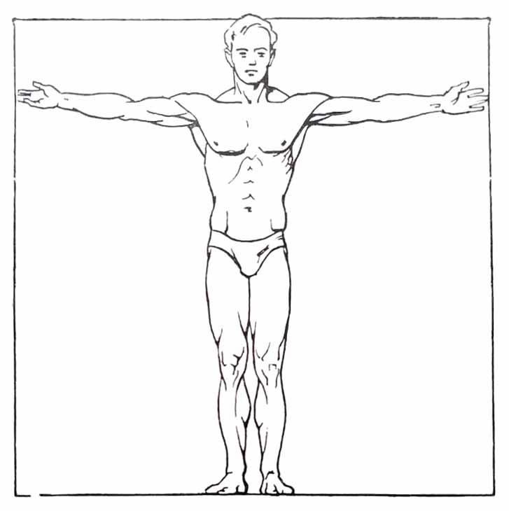 Proportions du corps humain. Carré des Anciens