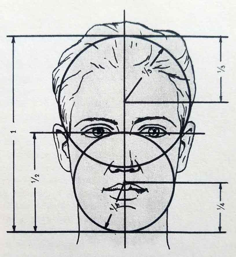 Proportions du visage. Schéma 2.