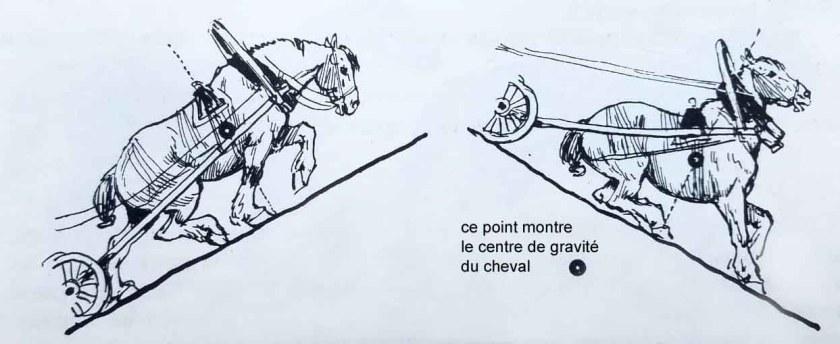 Apprendre à dessiner un cheval. Le cheval monte et descend