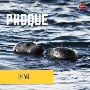 2-phoque