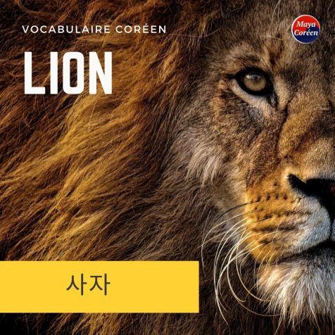 4-lion