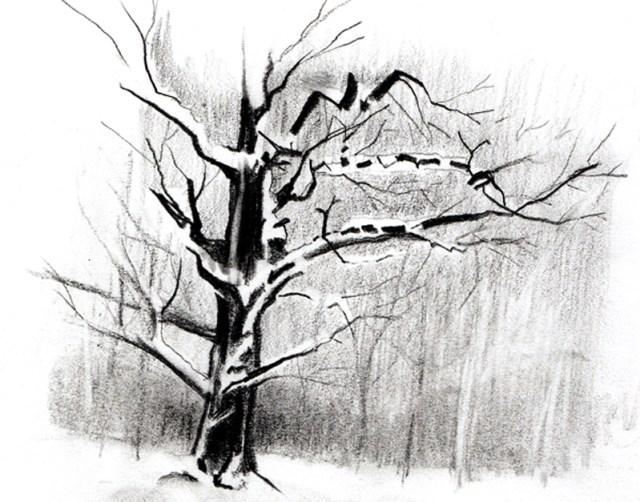 arbre-neige22