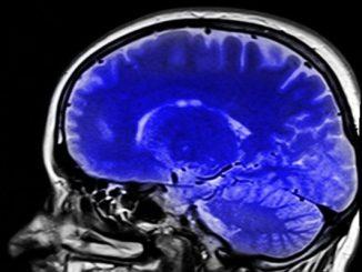 cerveau conversationimage 20160912 19243 atfeoo e1516633438405 - Six règles pour régénérer son cerveau