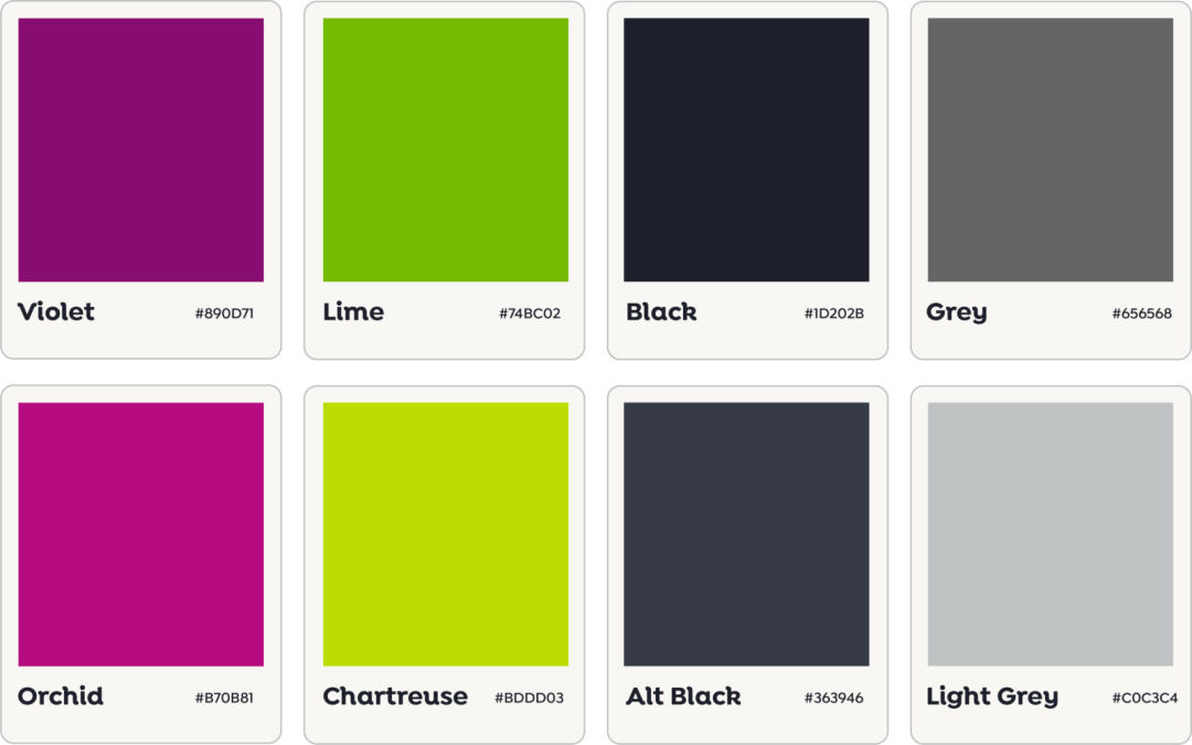 Designing appsky's New Brand