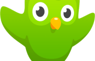Duolingo: The best free language learning app