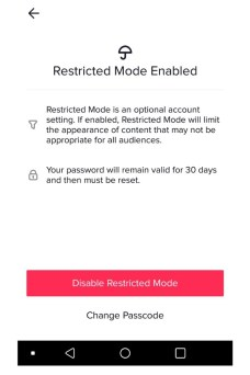 Step Three For Enabling Restricted Mode