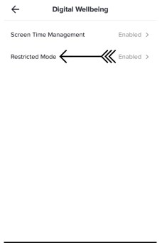 Step Two For Enabling Restricted Mode