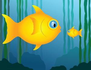 big-fish-little-fish-logo