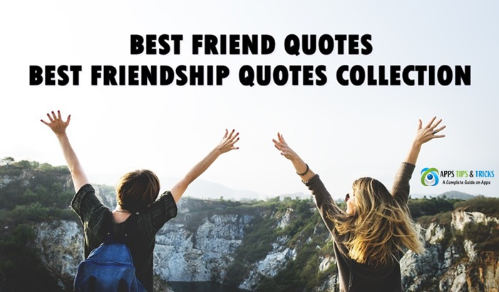 Short Best Friend Quotes 2019 Best Friendship Quotes Collection