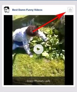 How To Download Video Downloader for Facebook (iPhone)