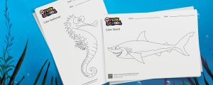 Appy Oceans Colouring Book