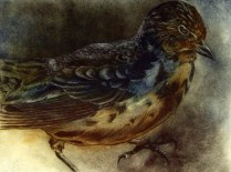 Bird Study, 2009; intaglio; Image: 19 1/2 x 25 1/2 inches