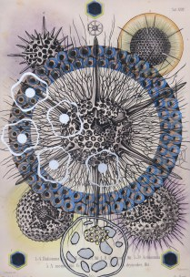 Radiolaria #5, 2007; Inkjet, screenprint, painting; Image: 20 x 13 inches