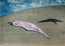 Martin John Garhart (born 1946); In Passing, 1976; Lithograph; 18 x 25 inches