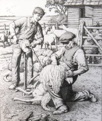 Stanley Anderson (1884-1966); Sheep Shearing, 1941; Engraving; Image: 7 1/4 x 6 inches