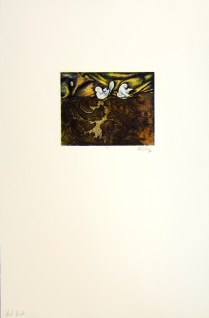 Margaret Craig; Bad Birds: Untitled, 1996; Photo etching; Image: 126 mm x 169 mm
