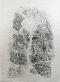 Floating Foragers II State ( For Bob Anderson), 2009; Lithography;