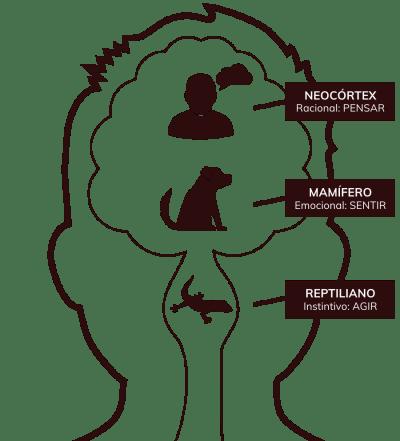 Ilustração das camadas propostas por MacLean com o cérebro reptiliano