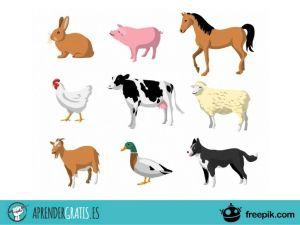 Aprender Gratis | Curso de introducción al comportamiento animal