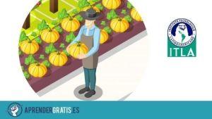 Aprender Gratis | Curso sobre derecho agrario y ecológico