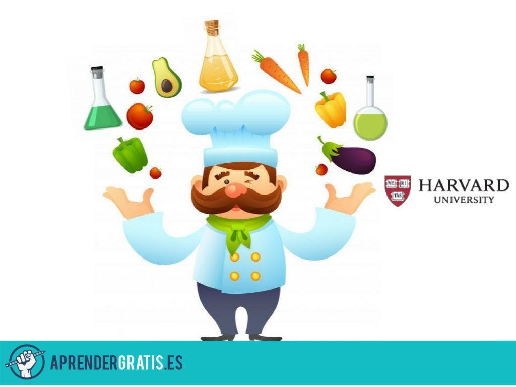 Aprender Gratis | Curso sobre cocina y ciencia