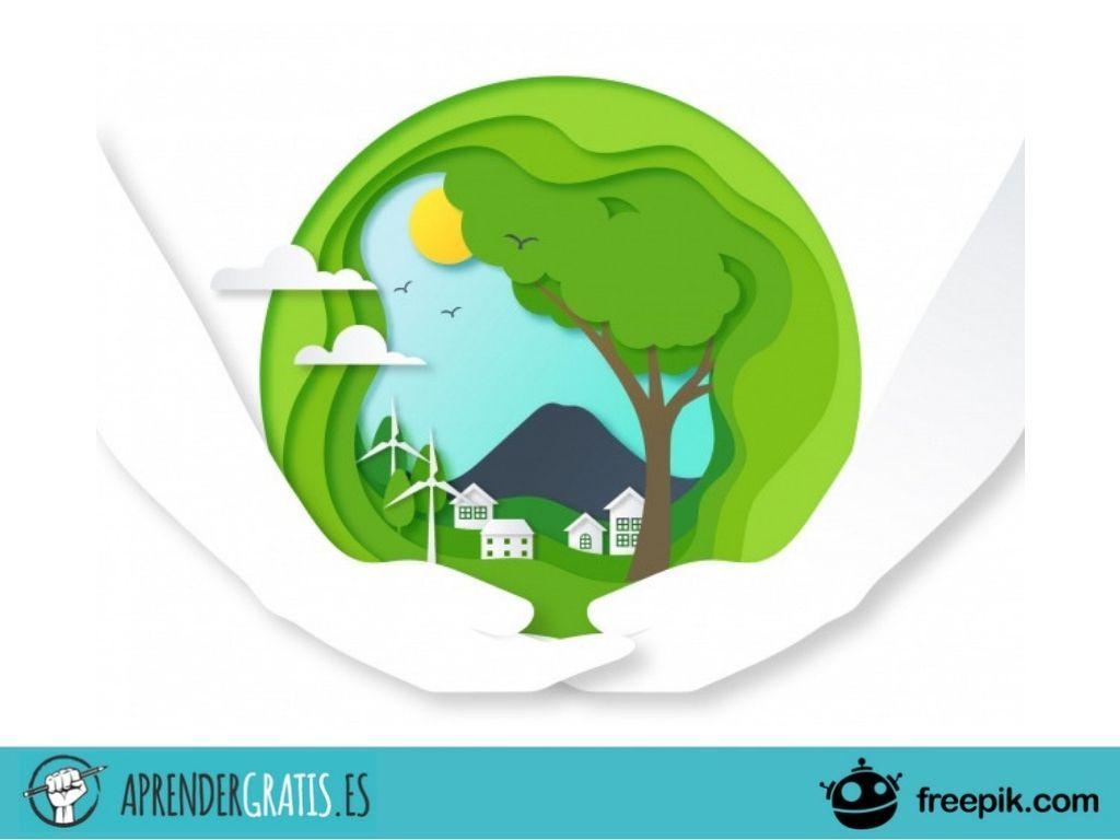Aprender Gratis | Curso de introducción a la ecología
