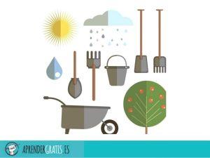 Aprender Gratis | Manual de técnicas de recogida de agua de lluvia para agricultura ecológica