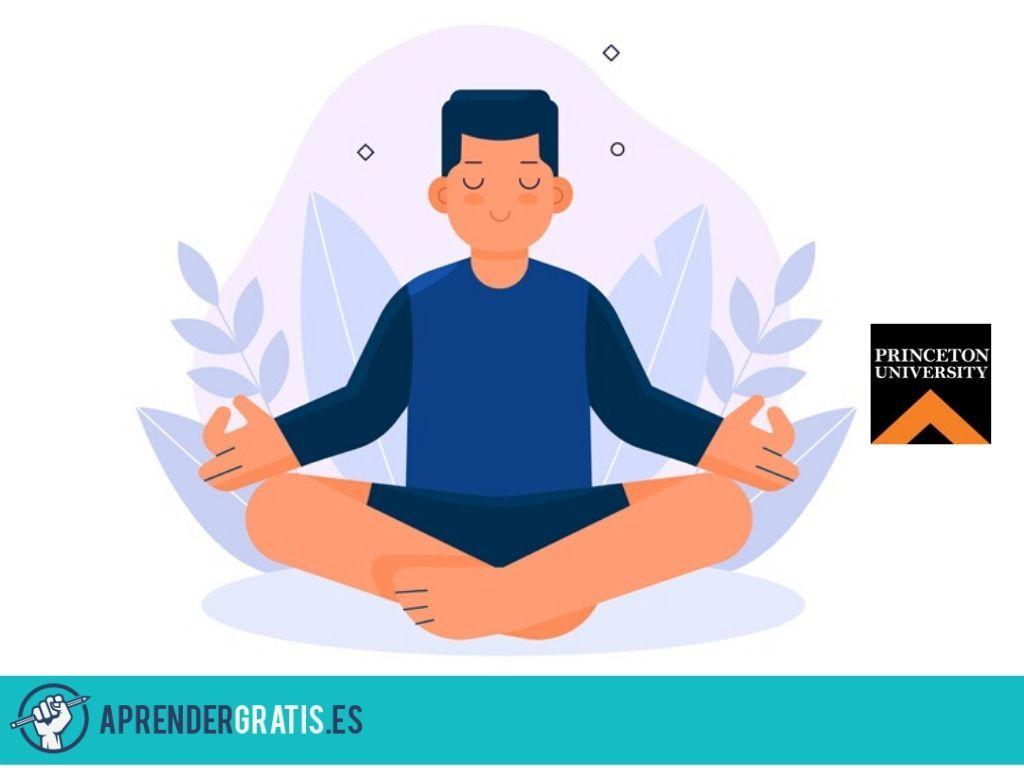 Aprender Gratis   Curso sobre budismo, meditación y psicología moderna