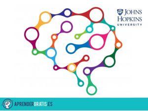 Aprender Gratis   Curso sobre psicología de los primeros auxilios