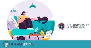 Aprender Gratis | Curso sobre el comportamiento y bienestar de las mascotas