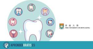 Aprender Gratis | Curso sobre implantes en odontología
