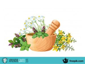 Aprender Gratis | Curso sobre medicina herbal