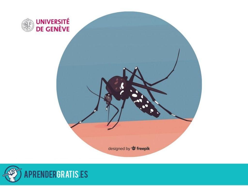 Aprender Gratis   Curso sobre el Zika