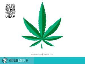 Aprender Gratis | Curso sobre el marco legal para la marihuana