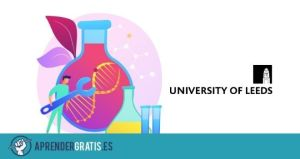 Aprender Gratis   Curso sobre implantes ortopédicos y medicina regenerativa