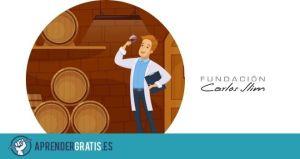 Aprender Gratis | Curso para ser bodeguero (vinos y licores)