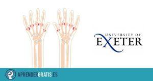 Aprender Gratis | Curso sobre ejercicios para manos con artritis y reuma