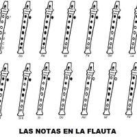 Flauta. Notas de flauta