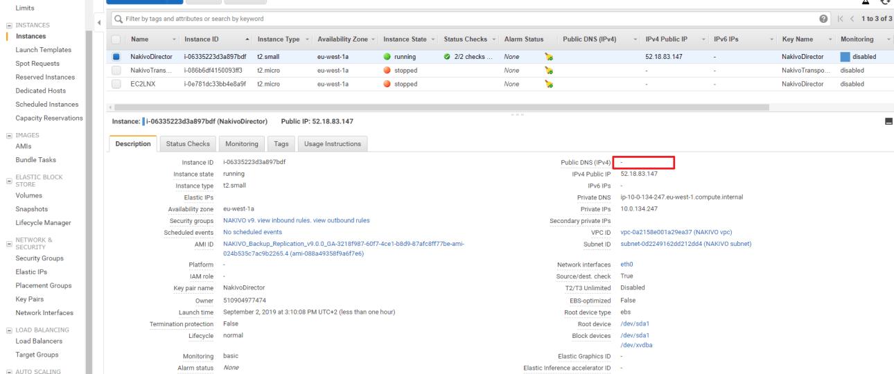 Habilitar el DNS publico en una Instancia EC2
