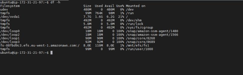 Montar sistema de archivos EFS1