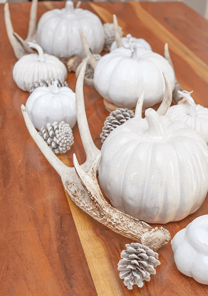 neutral autumn tabletop decor using pumpkins, pinecones, and shed antlers