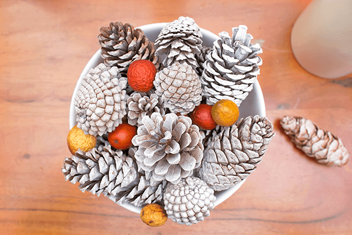 Simple fall centerpiece using pinecones and nuts.