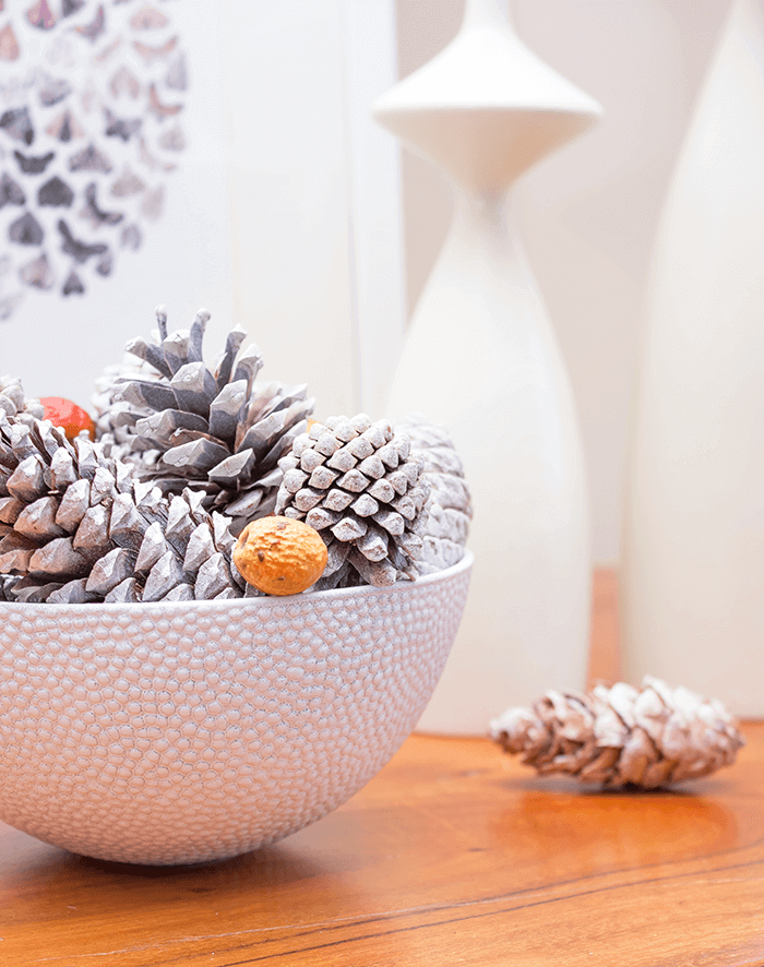 white bowl with pinecones