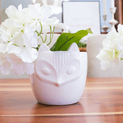 5 Simple & Creative Ways To Integrate Flowers In Your Home - In Candle Holder or Planter