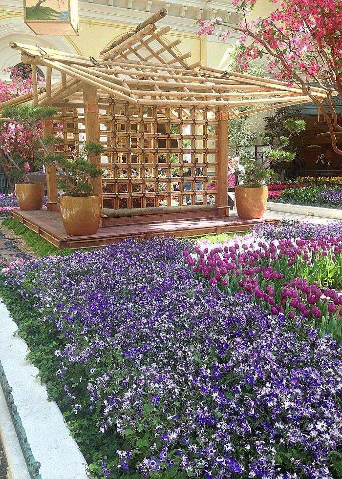 Japanese structure - Botanical Garden - Las Vegas